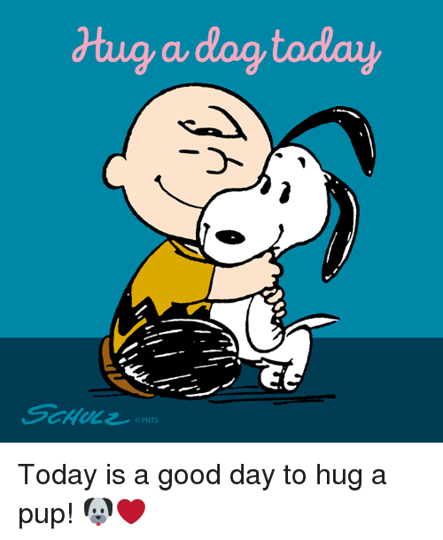 Today Is A Good Day: dtug a dog today  OPNTS Today is a good day to hug a pup! 🐶❤️