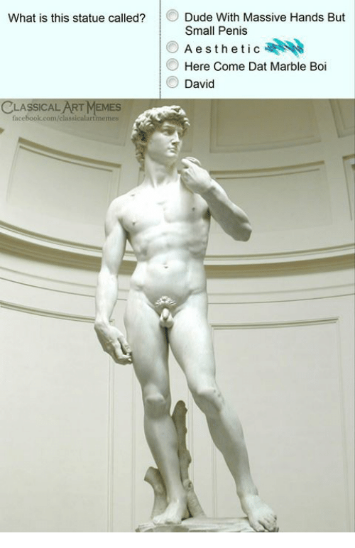 marble: Dude With Massive Hands But  Small Penis  Aesthetic  Here Come Dat Marble Boi  David  What is this statue called?  CLASSICAL ART MEMES  facebook.com/classicalurtmemes