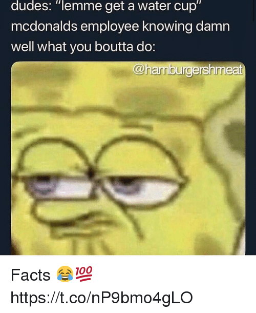 "Facts, McDonalds, and Water: dudes: ""lemme get a water cup""  mcdonalds employee knowing damn  well what you boutta do:  @hamburdershmeat Facts 😂💯 https://t.co/nP9bmo4gLO"