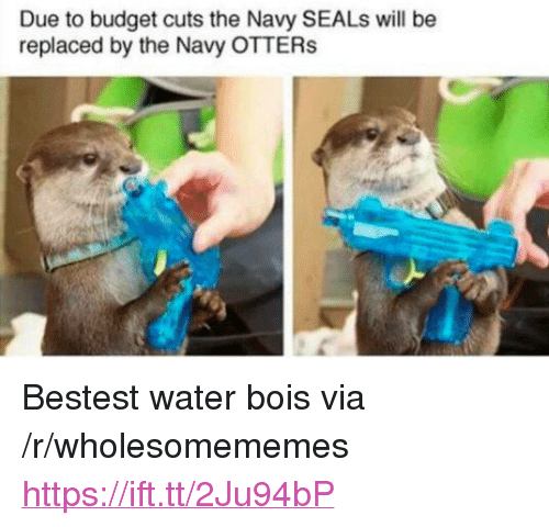 "Otters, Budget, and Navy: Due to budget cuts the Navy SEALs will be  replaced by the Navy OTTERs <p>Bestest water bois via /r/wholesomememes <a href=""https://ift.tt/2Ju94bP"">https://ift.tt/2Ju94bP</a></p>"