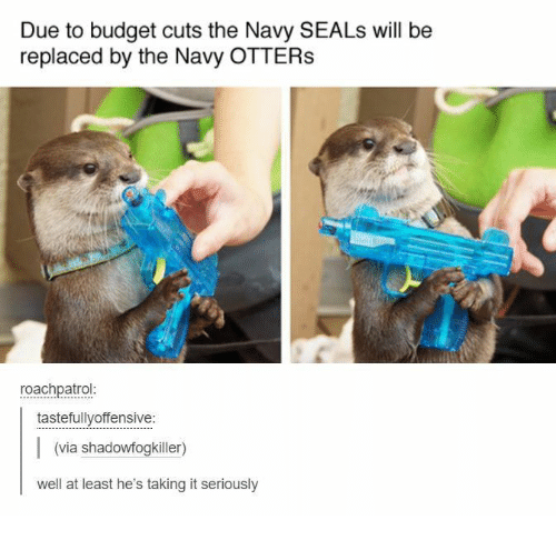 Otters, Budget, and Navy: Due to budget cuts the Navy SEALs will be  replaced by the Navy OTTERS  roachpatrol  tastefullyoffensive:  (via shadowfogkiller)  well at least he's taking it seriously