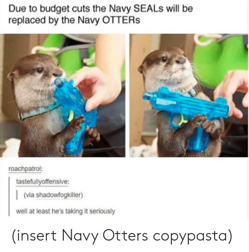 copypasta: Due to budget cuts the Navy SEALs will be  replaced by the Navy OTTERs  roachpatrol:  tastefullyoffensive:  (via shadowfogkiller)  well at least he's taking it seriously (insert Navy Otters copypasta)