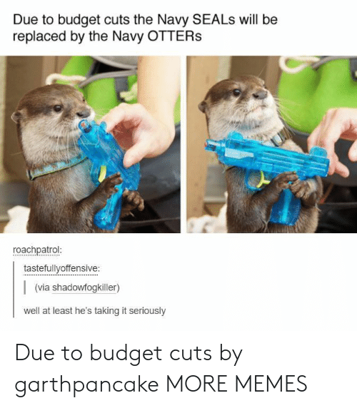 Dank, Memes, and Otters: Due to budget cuts the Navy SEALs will be  replaced by the Navy OTTERS  roachpatrol  tastefullyoffensive:  (via shadowfogkiller)  well at least he's taking it seriously Due to budget cuts by garthpancake MORE MEMES