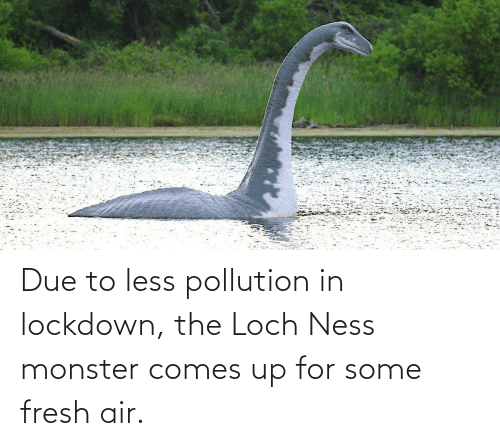 Due To: Due to less pollution in lockdown, the Loch Ness monster comes up for some fresh air.