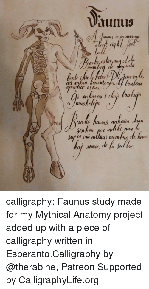 Life, Tumblr, and Blog: dunus  a is in aaara  a beut Er  Lell  est (hic If luctur)..pliAon ча 1€,  akeca  apnidico estas  ahg havas anhaia dan  hon po indiki nu la calligraphy: Faunus study made for my Mythical Anatomy project added up with a piece of calligraphy written in Esperanto.Calligraphy by @therabine, Patreon Supported by CalligraphyLife.org