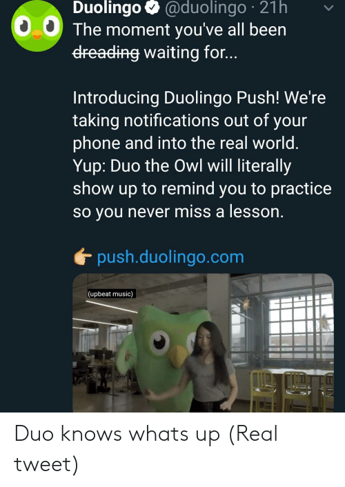 miss a: Duolingo @duolingo 21h  0.0 The moment you've all been  dreading waiting for...  Introducing Duolingo Push! We're  taking notifications out of your  phone and into the real world  Yup: Duo the Owl will literally  show up to remind you to practice  so you never miss a lesson  push.duolingo.com  (upbeat music) Duo knows whats up (Real tweet)