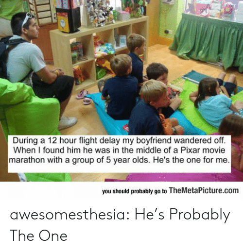 Found Him: During a 12 hour flight delay my boyfriend wandered off.  When I found him he was in the middle of a Pixar movie  marathon with a group of 5 year olds. He's the one for me  you should probably go to TheMetaPicture.com awesomesthesia:  He's Probably The One