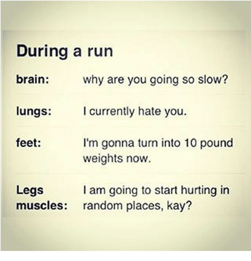 Run, Brain, and Feet: During a run  brain:  why are you going so slow?  I currently hate you  lungs:  feet:  I'm gonna turn into 10 pound  weights now.  I am going to start hurting in  random places, kay?  Legs  muscles: