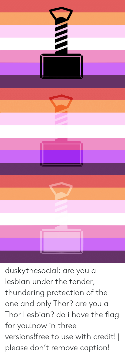 Target, Tumblr, and Blog: duskythesocial:  are you a lesbian under the tender, thundering protection of the one and only Thor? are you a Thor Lesbian? do i have the flag for you!now in three versions!free to use with credit! | please don't remove caption!