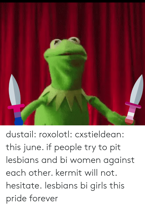 Bi Women: dustail:  roxolotl:  cxstieldean: this june. if people try to pit lesbians and bi women against each other. kermit will not. hesitate. lesbians  bi girls this pride  forever
