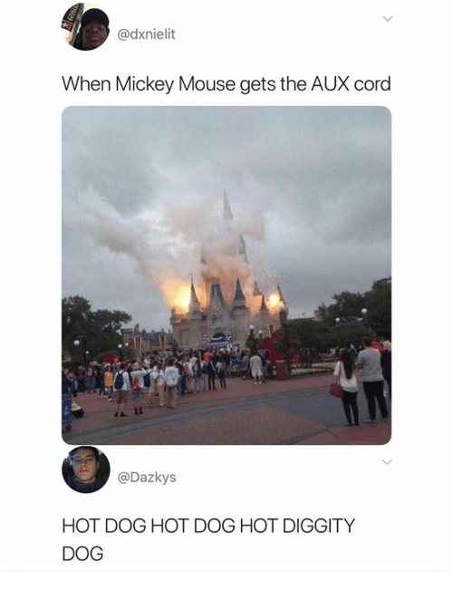hot dog: @dxnielit  When Mickey Mouse gets the AUX cord  @Dazkys  HOT DOG HOT DOG HOT DIGGITY  DOG
