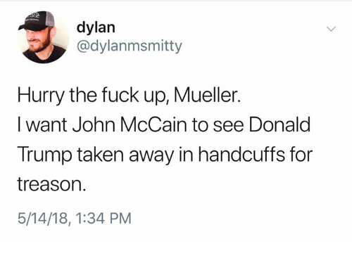 Donald Trump, Taken, and Fuck: dylan  @dylanmsmitty  Hurry the fuck up, Mueller.  I want John McCain to see Donald  Trump taken away in handcuffs for  treason.  5/14/18, 1:34 PM