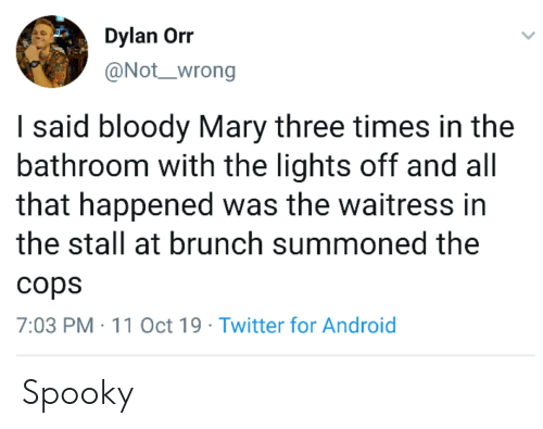 Bloody Mary: Dylan Orr  @Not_wrong  I said bloody Mary three times in the  bathroom with the lights off and all  that happened was the waitress in  the stall at brunch summoned the  cops  7:03 PM 11 Oct 19 Twitter for Android Spooky