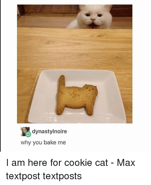 Textposts: dynastylnoire  why you bake me I am here for cookie cat - Max textpost textposts