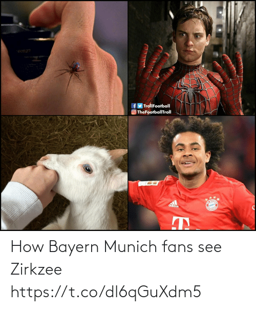 Adidas: e0527  fy TrollFootball  TheFootballTroll  Co  adidas How Bayern Munich fans see Zirkzee https://t.co/dl6qGuXdm5
