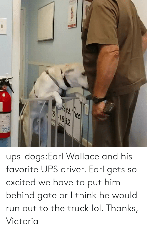 victoria: eA  6 1832 ups-dogs:Earl Wallace and his favorite UPS driver. Earl gets so excited we have to put him behind gate or I think he would run out to the truck lol. Thanks, Victoria