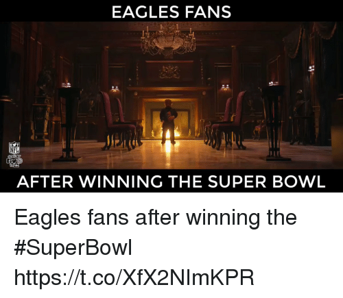 Philadelphia Eagles, Nfl, and Super Bowl: EAGLES FANS  RYT  NFL  Tube  AFTER WINNING THE SUPER BOWL Eagles fans after winning the #SuperBowl https://t.co/XfX2NImKPR