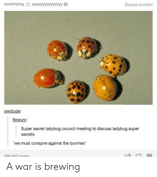 Bunnies, Memes, and 🤖: easierlyinggayyyyyyvyyyyy  Source: cum5lut  owidude:  flowury:  Super secret ladybug council meeting to discuss ladybug super  secrets  we must conspire against the bunnies  299 937 notes A war is brewing