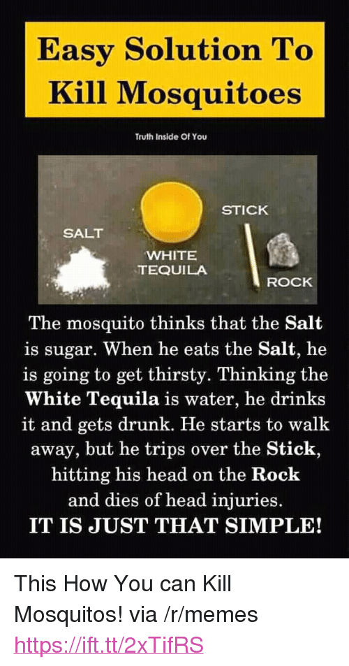 "Drunk, Head, and Memes: Easy Solution To  Kill Mosquitoes  Truth Inside Of You  STICK  SALT  WHITE  TEQUILA  ROCK  The mosquito thinks that the Salt  is sugar. When he eats the Salt, he  is going to get thirsty. Thinking the  White Tequila is water, he drinks  it and gets drunk. He starts to walk  away, but he trips over the Stick,  hitting his head on the Rock  and dies of head injuries.  IT IS JUST THAT SIMPLE! <p>This How You can Kill Mosquitos! via /r/memes <a href=""https://ift.tt/2xTifRS"">https://ift.tt/2xTifRS</a></p>"
