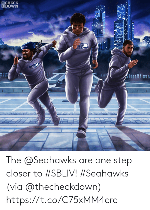 step: ECHECK  IDOWN  %3D The @Seahawks are one step closer to #SBLIV! #Seahawks  (via @thecheckdown) https://t.co/C75xMM4crc