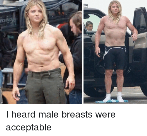 Funny, Echo, and Breasts: ECHO I heard male breasts were acceptable