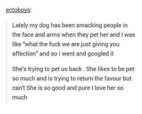 """Googłe: ectoboys:  Lately my dog has been smacking people in  the face and arms when they pet her and l was  like """"what the fuck we are just giving you  affection"""" and so l went and googled it  She's trying to pet us back. She likes to be pet  so much and is trying to return the favour but  can't She is so good and pure l love her so  much"""