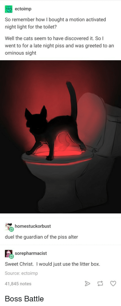 litter box: ectoimp  So remember how I bought a motion activated  night light for the toilet?  Well the cats seem to have discovered it. So I  went to for a late night piss and was greeted to an  ominous sight  homestuckorbust  duel the guardian of the piss alter  sorepharmacist  Sweet Christ. I would just use the litter box.  Source: ectoimp  41,845 notes Boss Battle