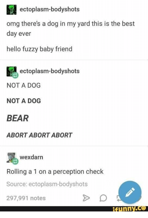 Hello, Omg, and Bear: ectoplasm-bodyshots  omg there's a dog in my yard this is the best  day ever  hello fuzzy baby friend  ectoplasm-bodyshots  NOT A DOG  NOT A DOG  BEAR  ABORT ABORT ABORT  wexdarn  Rolling a 1 on a perception check  Source: ectoplasm-bodyshots  297,991 notes  ffunny.C