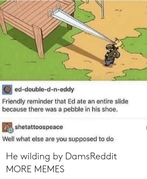 Wilding: ed-double-d-n-eddy  Friendly reminder that Ed ate an entire slide  because there was a pebble in his shoe.  shetattoospeace  Well what else are you supposed to do He wilding by DamsReddit MORE MEMES