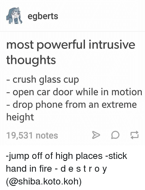 koh: egberts  most powerful intrusive  thoughts  crush glass cup  open car door while in motion  drop phone from an extreme  height  19,531 notes -jump off of high places -stick hand in fire - d e s t r o y (@shiba.koto.koh)