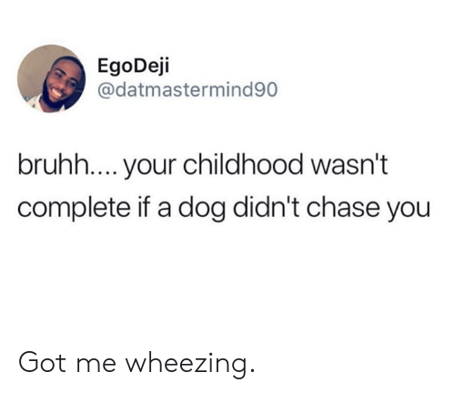 Chase You: EgoDeji  @datmastermind90  bruhh.... your childhood wasn't  complete if a dog didn't chase you Got me wheezing.