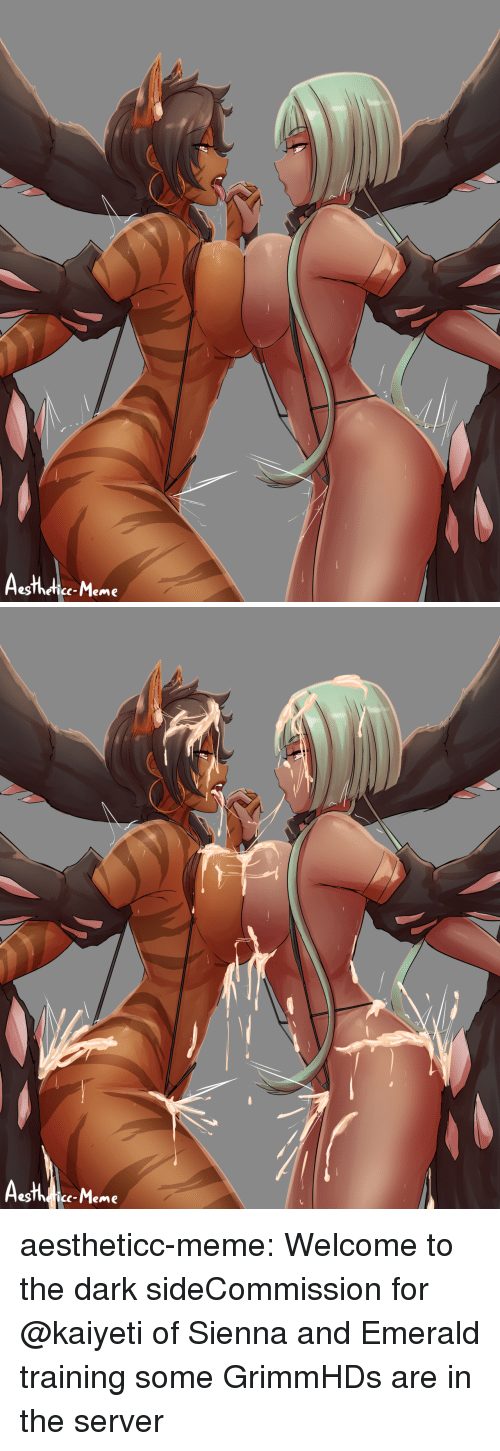 Meme Tumblr: egThefice-Meme   c-Meme aestheticc-meme:  Welcome to the dark sideCommission for @kaiyeti of Sienna and Emerald training some GrimmHDs are in the server