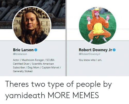 Robert Downey Jr.: EI  Brie Larson  Robert Downey Jre  @RobertDowneyJr  You know who I am  @brielarson  Actor / Mushroom Forager SCUBA  Certified Diver Scientific American  Subscriber / Dog Mom / Captain Marvel /  Generally Stoked Theres two type of people by yamideath MORE MEMES