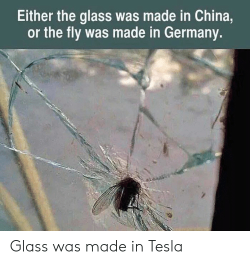 In China: Either the glass was made in China,  or the fly was made in Germany. Glass was made in Tesla