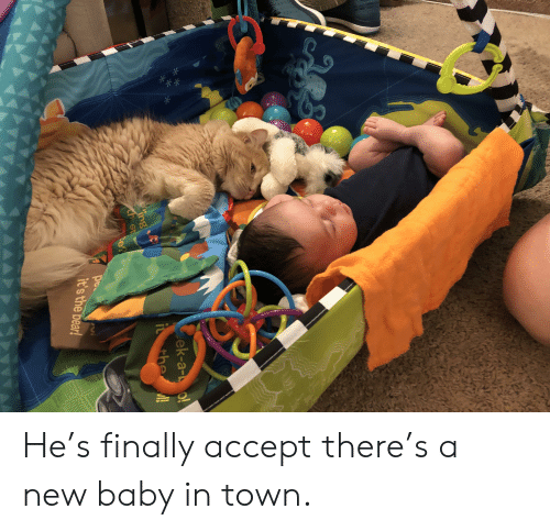 Bear, Baby, and Aaa: ek-a- o!  the!  ing  ch st  e?  pec  it's the bear!  AAA He's finally accept there's a new baby in town.