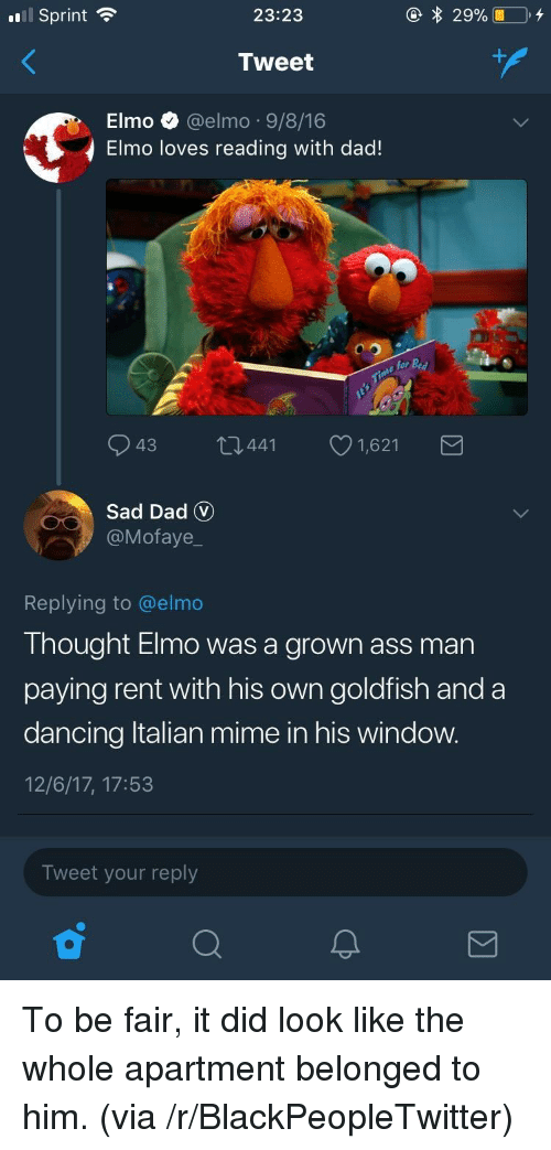 Ass, Blackpeopletwitter, and Dad: El Sprint  23:23  Tweet  Elmo @elmo 9/8/16  4 Elmo loves reading with dad!  for Bed  943 t34411,621  Sad Dad V  @Mofaye_  Replying to @elmo  Thought Elmo was a grown ass man  paying rent with his own goldfish and a  dancing ltalian mime in his window  12/6/17, 17:53  Tweet your reply <p>To be fair, it did look like the whole apartment belonged to him. (via /r/BlackPeopleTwitter)</p>