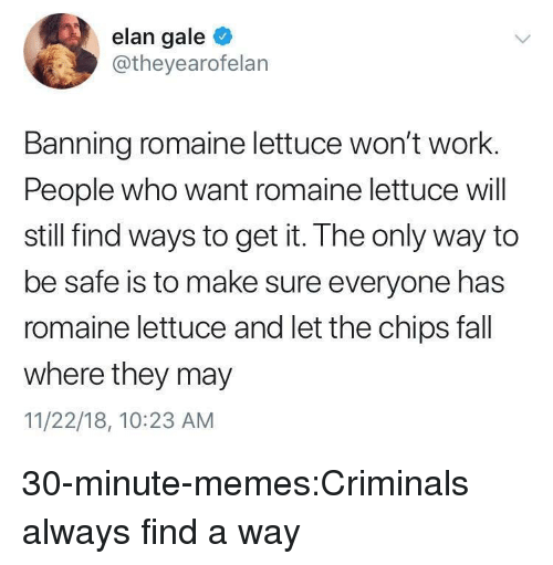 Fall, Memes, and Target: elan gale  @theyearofelan  Banning romaine lettuce won't work.  People who want romaine lettuce will  still find ways to get it. The only way to  be safe is to make sure everyone has  romaine lettuce and let the chips fall  where they may  11/22/18, 10:23 ANM 30-minute-memes:Criminals always find a way