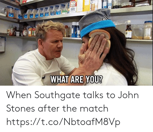 Soccer, Match, and John Stones: elant  WHAT ARE YOU? When Southgate talks to John Stones after the match https://t.co/NbtoafM8Vp
