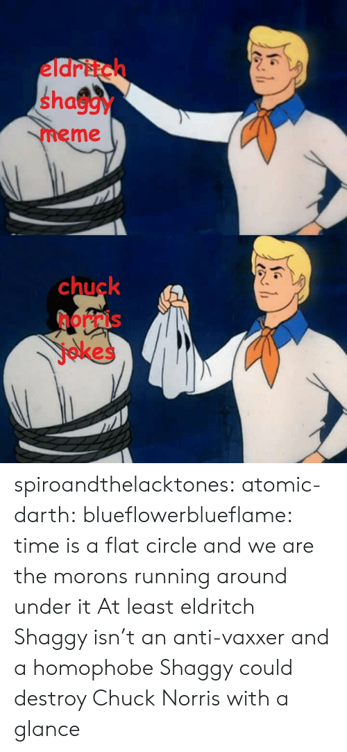 chuck norris jokes: eldritch  shaggy  meme  chuck  norris  jokes spiroandthelacktones: atomic-darth:  blueflowerblueflame: time is a flat circle and we are the morons running around under it  At least eldritch Shaggy isn't an anti-vaxxer and a homophobe   Shaggy could destroy Chuck Norris with a glance