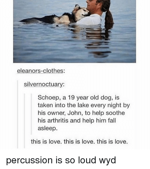 Clothes, Fall, and Love: eleanors-clothes:  silvernoctuary:  Schoep, a 19 year old dog, is  taken into the lake every night by  his owner, John, to help soothe  his arthritis and help him fall  asleep.  this is love, this is love. this is love. percussion is so loud wyd