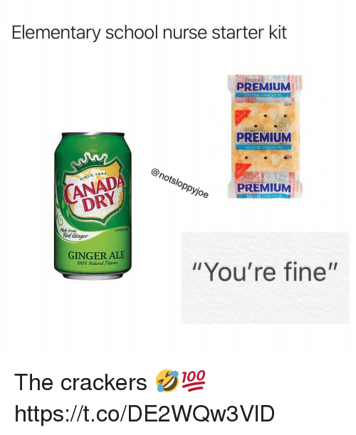 "Anaconda, School, and Elementary: Elementary school nurse starter kit  PREMIUM  PREMIUM  SALTINE CRACKERS  S/  Oppyjoe  PREMIUM  DRY  Made from  CAFFENE  Real (inger  GINGER ALE  100% Natural Tlaos  ""You're fine'"" The crackers 🤣💯 https://t.co/DE2WQw3VlD"
