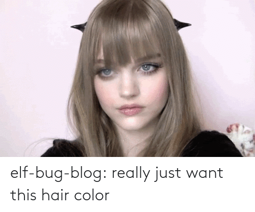 hair color: elf-bug-blog:  really just want this hair color