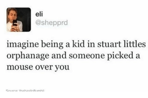 Littled: eli  @shepprd  imagine being a kid in stuart littles  orphanage and someone picked a  mouse over you.  Sourrp. thehestoffumhli