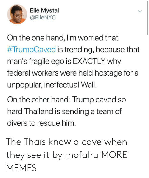 hostage: Elie Mystal  @ElieNYOC  On the one hand, l'm worried that  #TrumpCaved is trending, because that  man's fragile ego is EXACTLY why  federal workers were held hostage for a  unpopular, ineffectual Wall.  On the other hand: Trump caved so  hard Thailand is sending a team of  divers to rescue him The Thais know a cave when they see it by mofahu MORE MEMES