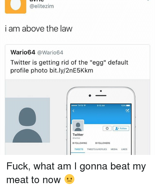 """Above the Law: @elitezim  i am above the law  Wario64  @Wario64  Twitter is getting rid of the """"egg"""" default  profile photo bit.ly/2nE5Kkm  TWTR P  Follow  Twitter  0 FOLLOWING  FOLLOWERS  TWEETS  TWEETS & REPLIES  MEDIA  LIKES Fuck, what am I gonna beat my meat to now 😐"""
