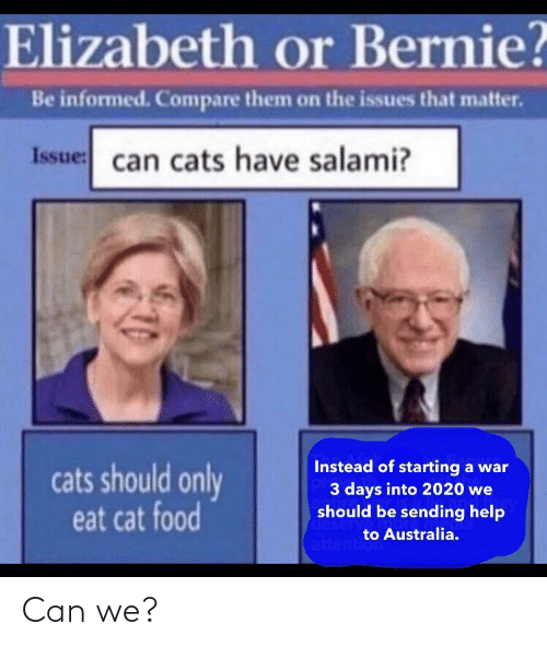 issues: Elizabeth or Bernie?  Be informed. Compare them on the issues that matter.  Issue: can cats have salami?  Instead of starting a war  3 days into 2020 we  should be sending help  cats should only  eat cat food  deserv  to Australia.  attention Can we?