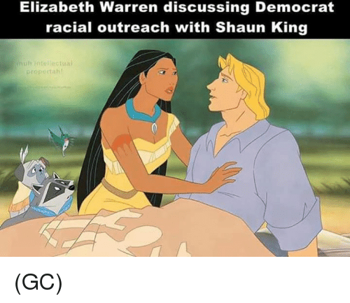 Elizabeth Warren: Elizabeth Warren discussing Democrat  racial outreach with Shaun King  muh intell  propectah (GC)