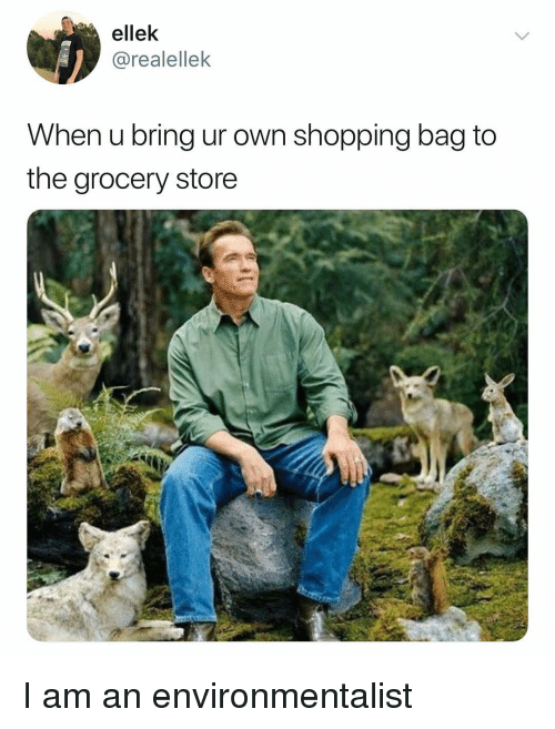 Shopping, Dank Memes, and Own: ellek  @realellek  When u bring ur own shopping bag to  the grocery store I am an environmentalist