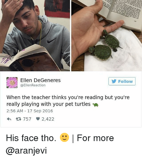 Turtling: Ellen DeGeneres  Follow  ta EllenReaction  When the teacher thinks you're reading but you're  really playing with your pet turtles  2:56 AM 17 Sep 2016  4h 757 2,422 His face tho. 🙂   For more @aranjevi