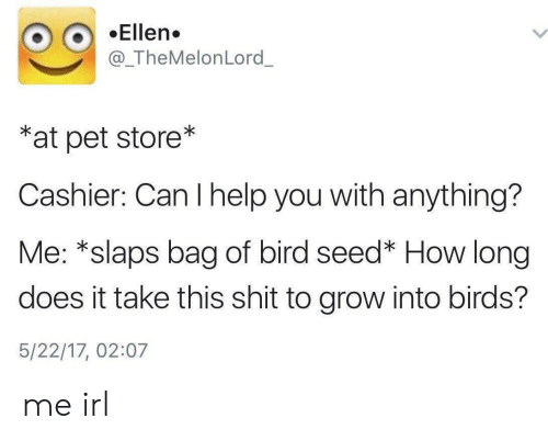 Shit, Birds, and Ellen: Ellen.  @_TheMelonLord_  *at pet store*  Cashier: Can I help you with anything?  Me: *slaps bag of bird seed* How long  does it take this shit to grow into birds?  5/22/17, 02:07 me irl